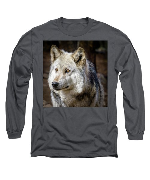 Long Sleeve T-Shirt featuring the photograph The Gray Wolf by Teri Virbickis