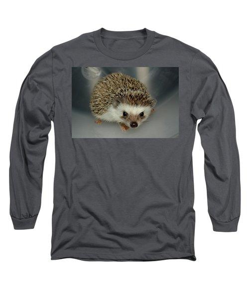 The Hedgehog Long Sleeve T-Shirt