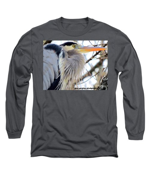 The Heron In Winter  Long Sleeve T-Shirt