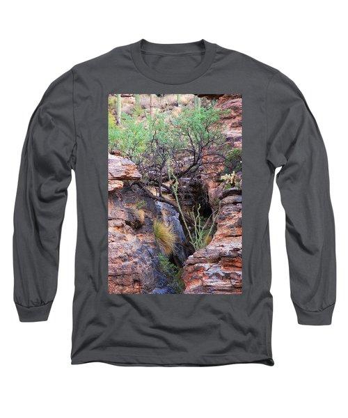 The Hole - Mount Lemmon Long Sleeve T-Shirt