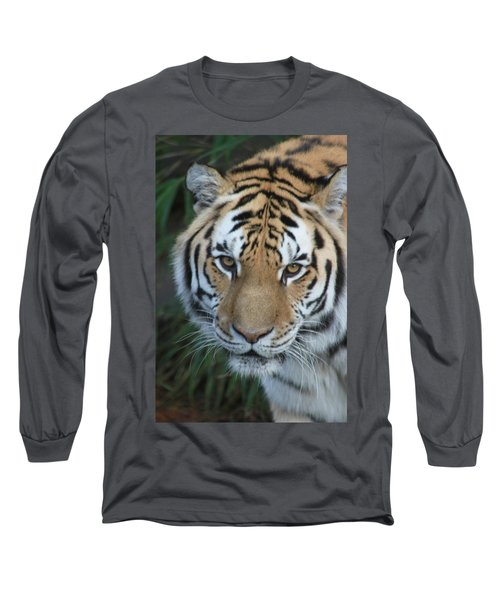 Long Sleeve T-Shirt featuring the photograph The Hunter by Laddie Halupa