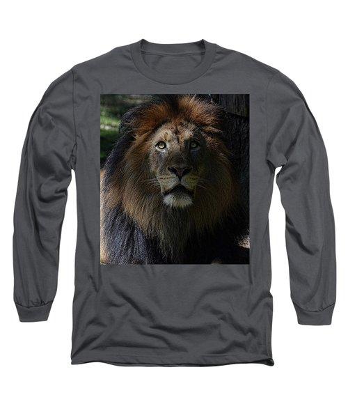 The King In Awe Long Sleeve T-Shirt by Ronda Ryan