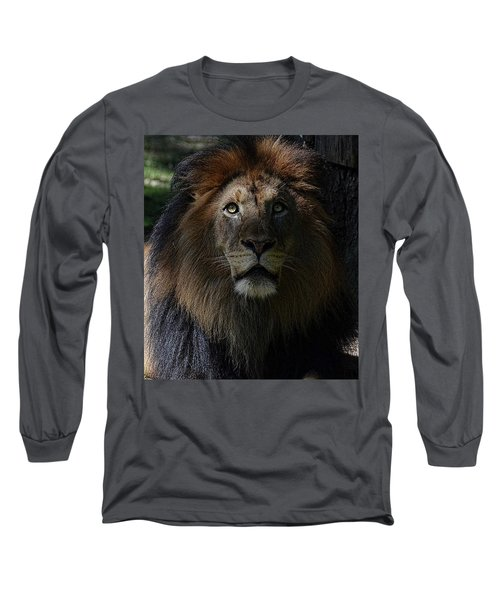 The King In Awe Long Sleeve T-Shirt