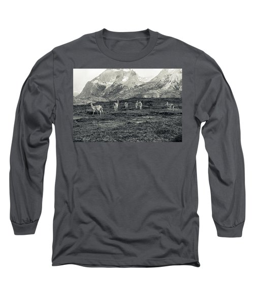 Long Sleeve T-Shirt featuring the photograph The Lamas by Andrew Matwijec