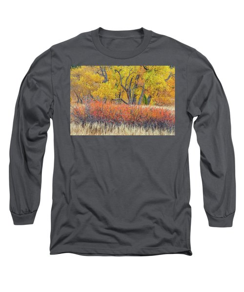 The Leaves That Will Become The Essential Component Of Soil Called Humus  Long Sleeve T-Shirt