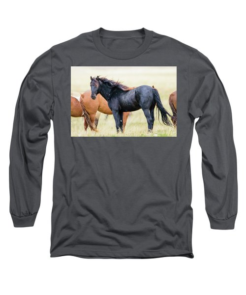 The Master Long Sleeve T-Shirt