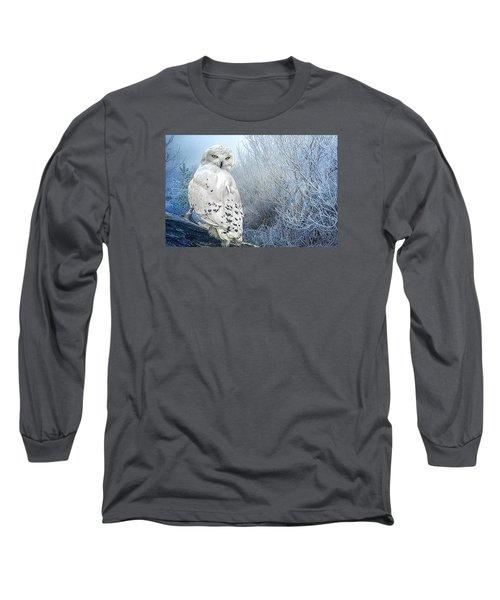 The Mystical Snowy Owl Long Sleeve T-Shirt by Brian Tarr