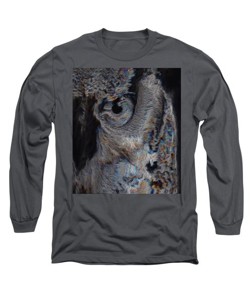 The Old Owl That Watches Long Sleeve T-Shirt