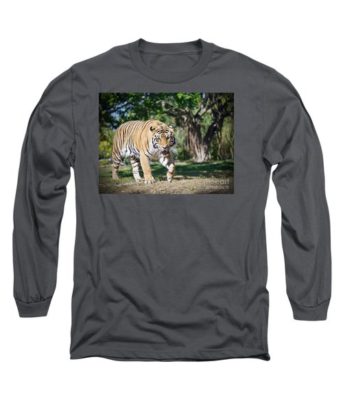 Long Sleeve T-Shirt featuring the photograph The Prowler by Judy Kay