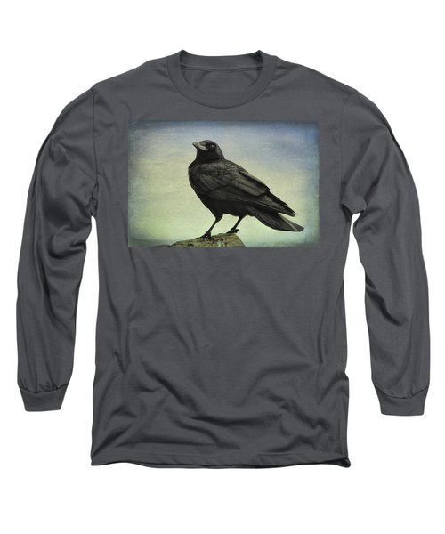 The Raven - 365-9 Long Sleeve T-Shirt