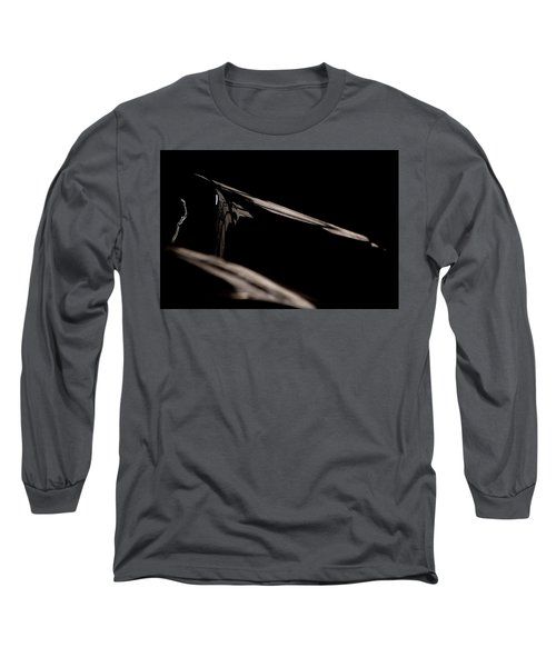 The Reflection Long Sleeve T-Shirt by Paul Job