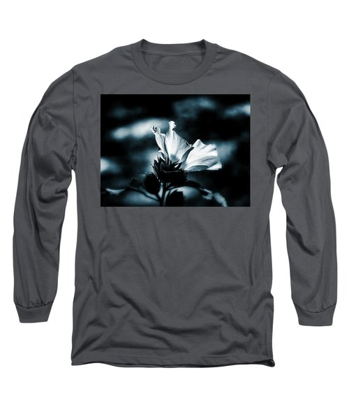 The Rose Of Sharon Long Sleeve T-Shirt by Allen Beilschmidt