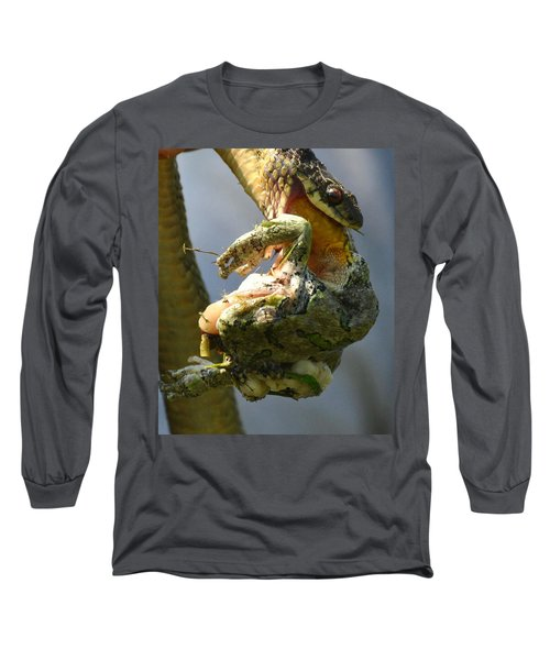 The Serpent And The Frog Long Sleeve T-Shirt by Lisa DiFruscio