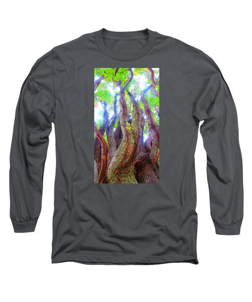 The Tree Of Salem Long Sleeve T-Shirt by Patricia Arroyo