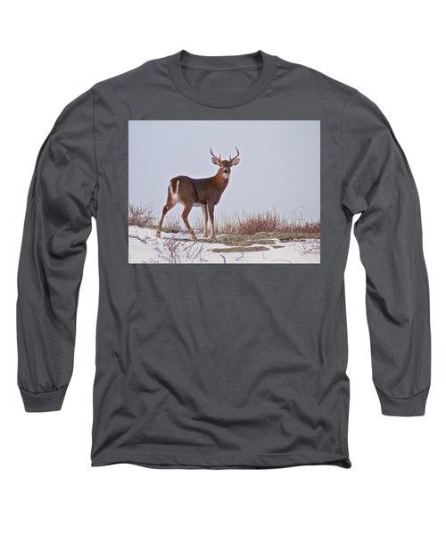 The Watchful Deer Long Sleeve T-Shirt by Nancy De Flon