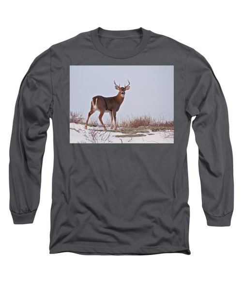 The Watchful Deer Long Sleeve T-Shirt