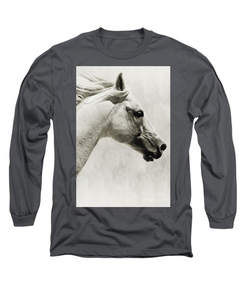 The White Horse IIi - Art Print Long Sleeve T-Shirt