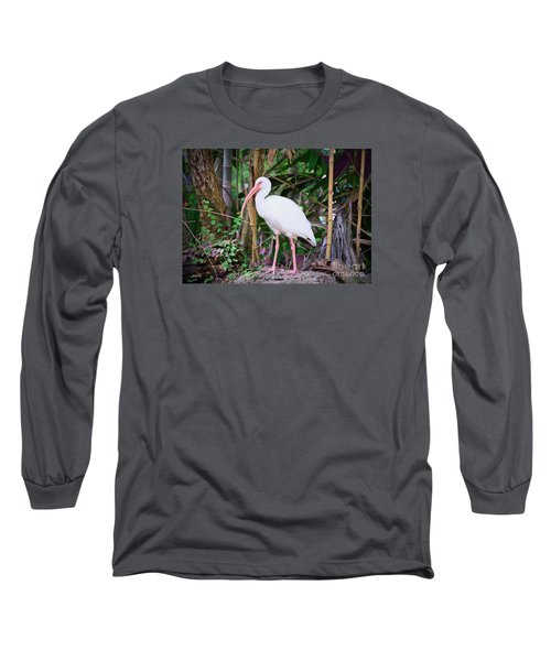 Long Sleeve T-Shirt featuring the painting The White Ibis by Judy Kay