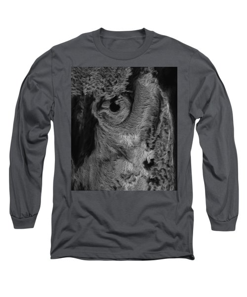 The Old Owl That Watches Blk Long Sleeve T-Shirt