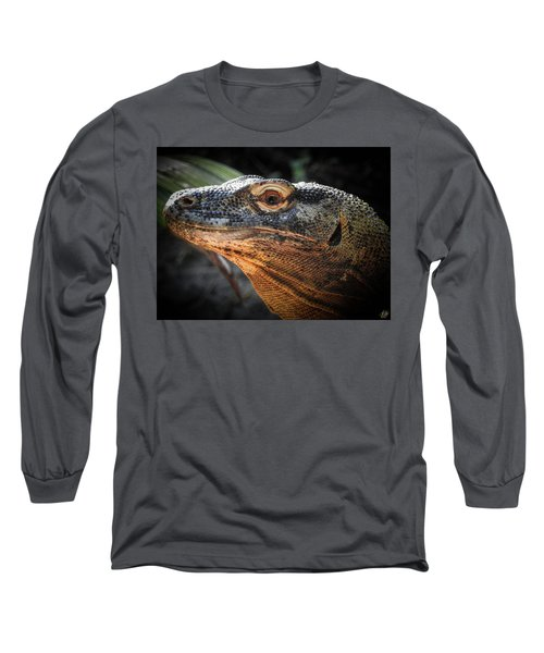 There Be Dragons, No. 5 Long Sleeve T-Shirt
