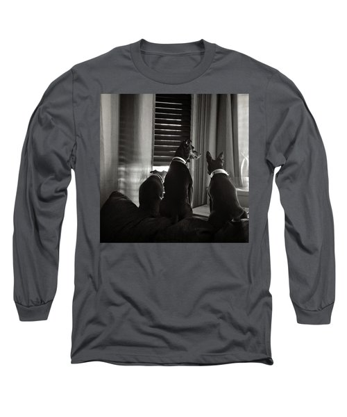 Three Min Pin Dogs Long Sleeve T-Shirt