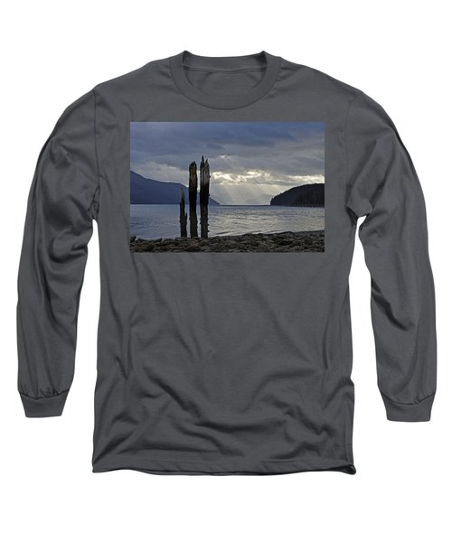 Three Remain Long Sleeve T-Shirt by Cathy Mahnke