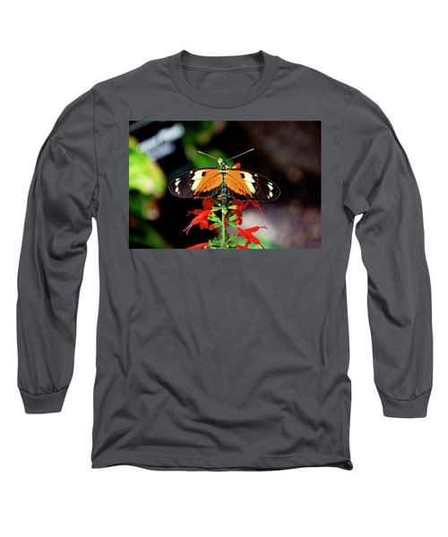 Tiger Longwing Butterfly Long Sleeve T-Shirt