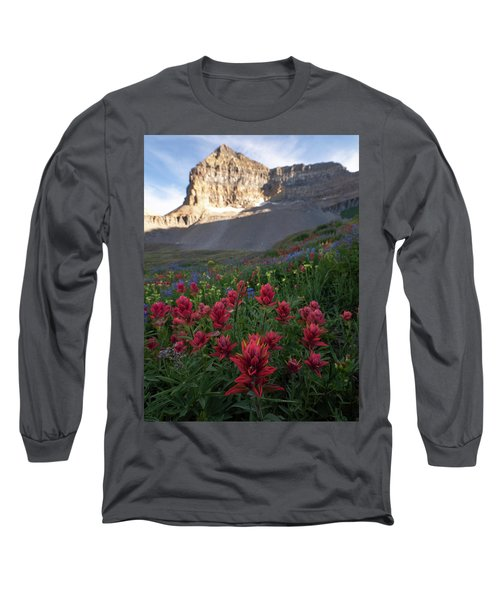 Timpanogos Paintbrush Long Sleeve T-Shirt