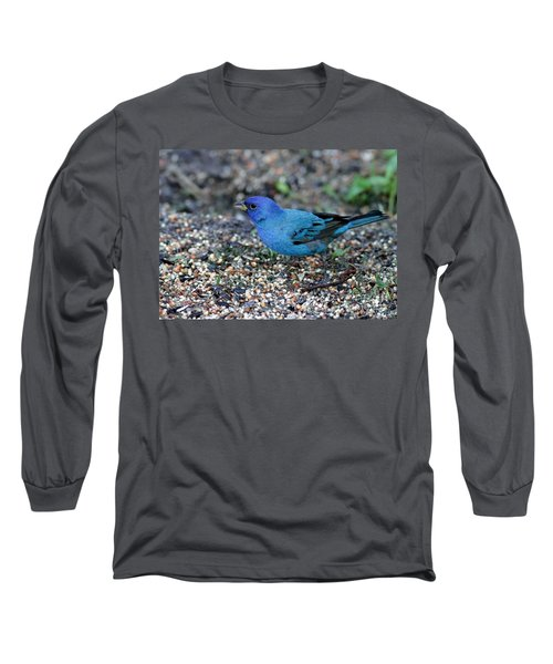Tiny Indigo Bunting Long Sleeve T-Shirt