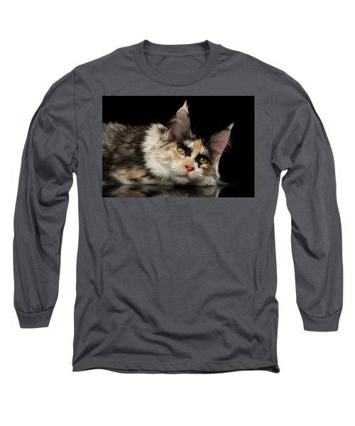 Tired Maine Coon Cat Lie On Black Background Long Sleeve T-Shirt