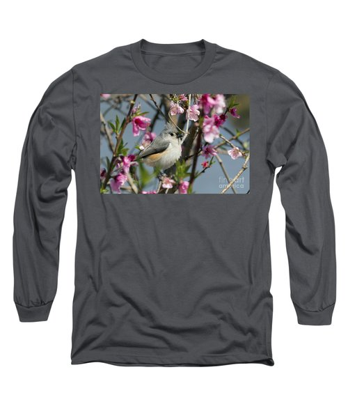 Titmouse And Peach Blossoms Long Sleeve T-Shirt