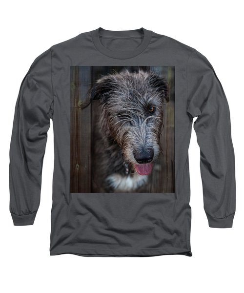 Toby, The Irish Wolfhound Pup Long Sleeve T-Shirt
