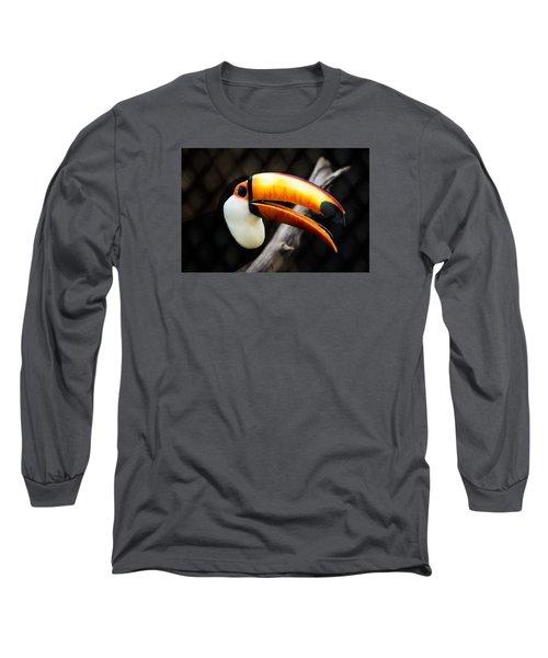 Toucan Long Sleeve T-Shirt by Daniel Precht