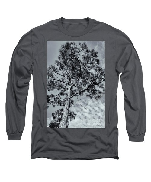 Towering Long Sleeve T-Shirt by Linda Lees