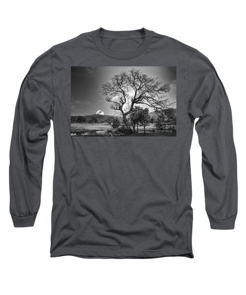Tree Long Sleeve T-Shirt by Charuhas Images