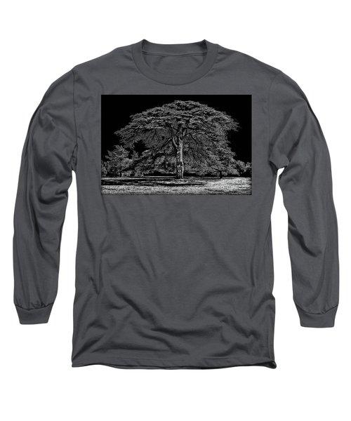 Tree In England Long Sleeve T-Shirt