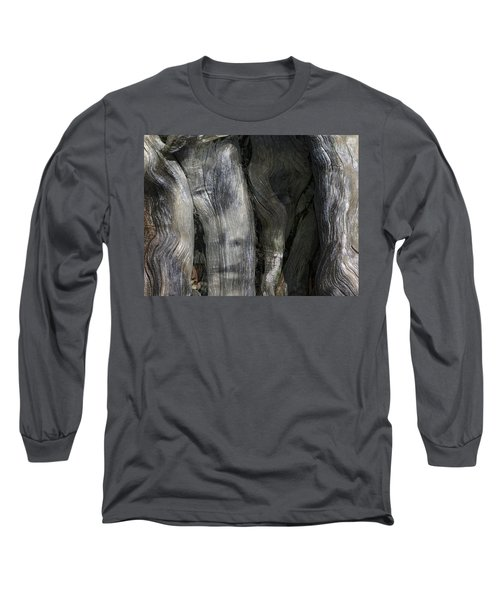 Long Sleeve T-Shirt featuring the photograph Tree Memories # 20 by Ed Hall