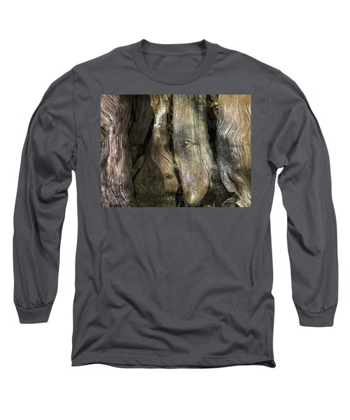 Long Sleeve T-Shirt featuring the photograph Tree Memories # 24 by Ed Hall