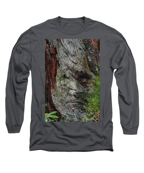 Long Sleeve T-Shirt featuring the photograph Tree Memories # 38 by Ed Hall