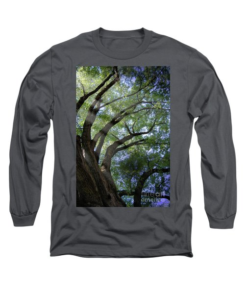 Long Sleeve T-Shirt featuring the photograph Tree Rays by Brian Jones