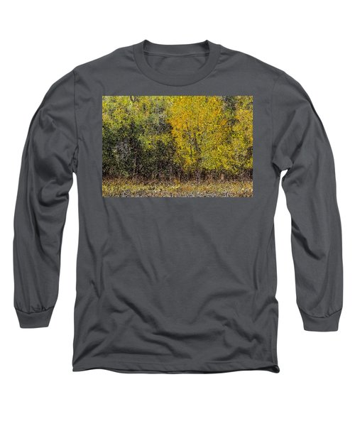 Trees In Fall With Texture Long Sleeve T-Shirt by John Brink