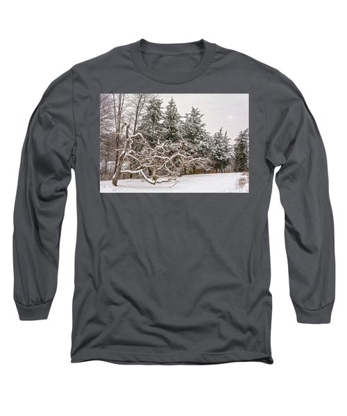 Trees Of Winter Long Sleeve T-Shirt