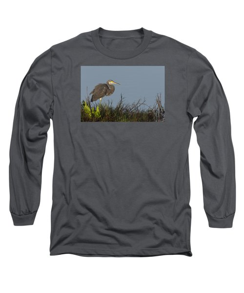 Tri-colored Heron In The Morning Light Long Sleeve T-Shirt
