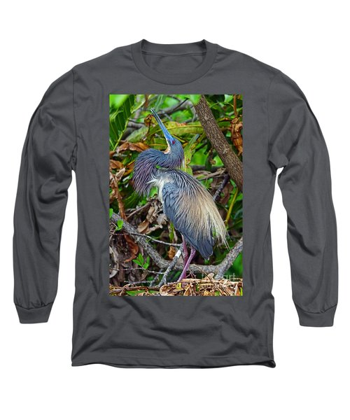 Tricolor Breeding Display Long Sleeve T-Shirt by Larry Nieland