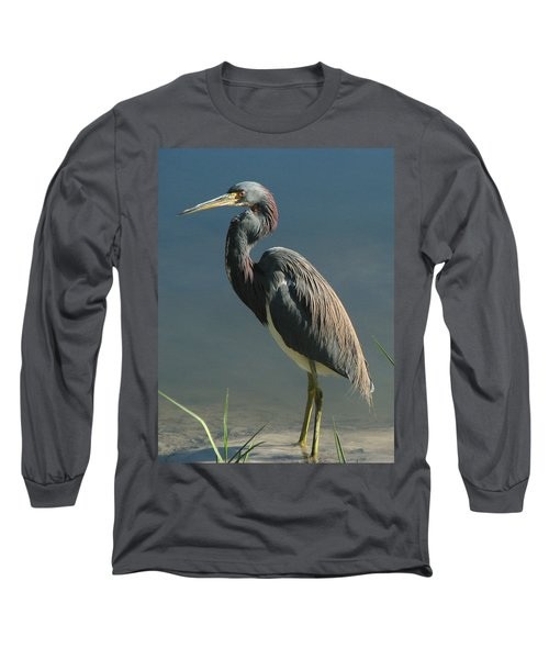 Tricolored Heron Long Sleeve T-Shirt
