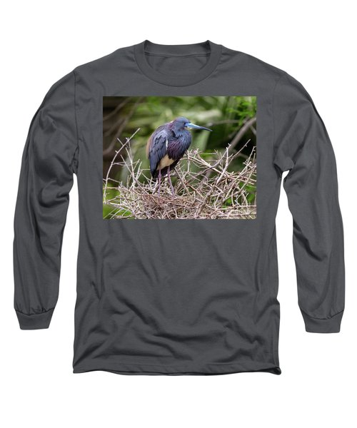 Tricolored Heron Long Sleeve T-Shirt by Ursula Lawrence