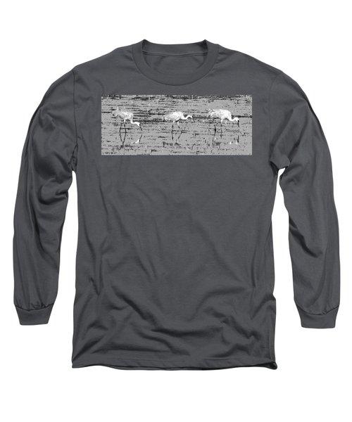 Trio Of Cranes Long Sleeve T-Shirt