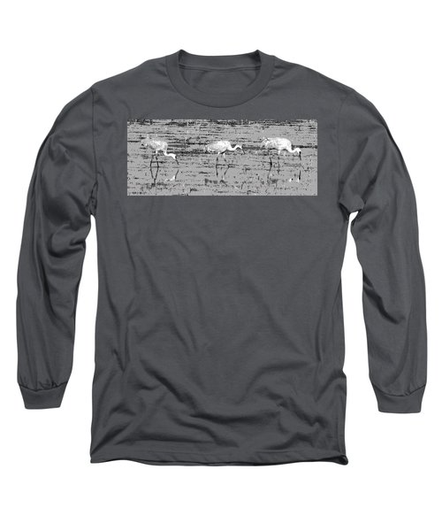 Trio Of Cranes Long Sleeve T-Shirt