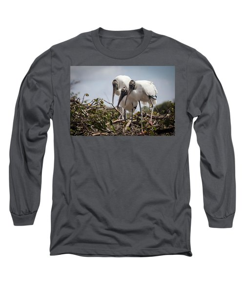 Trio Of Storks Long Sleeve T-Shirt by Jim Gillen
