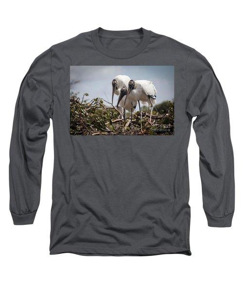 Trio Of Wood Storks Long Sleeve T-Shirt